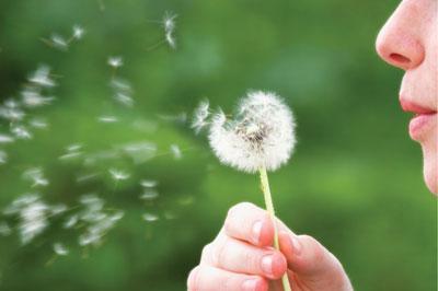 Allergie respiratorie e oculari